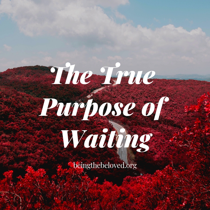 The True Purpose of Waiting